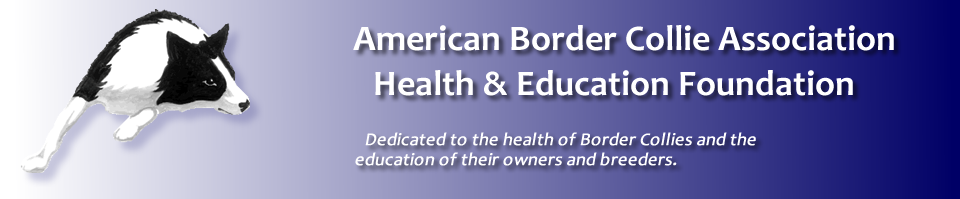 Border Collie Health & Education Foundation