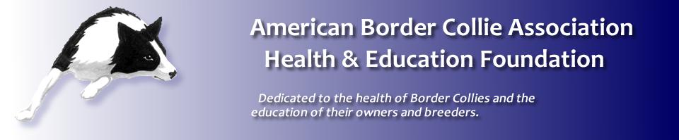 Border Collie Health & Education Foundation